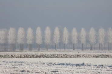 Inverno di Anna Maria Vantin
