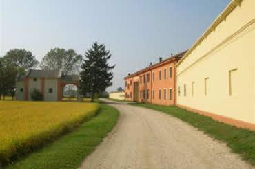 Azienda agricola Sala Virginio & figli – Ferrera Erbognone